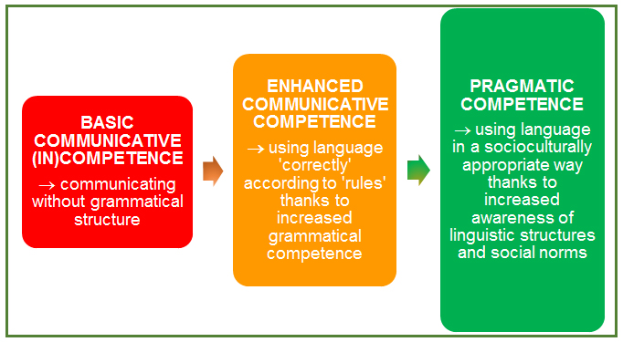 how to use competence in a sentence